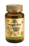 Solgar Kangavites Multivitamin & Mineral Chewable Tablets Tropical Punch