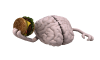 Junk food fats linked to poor memory