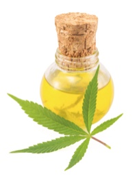 How CBD Oil (cannabidiol) may help many painful conditions