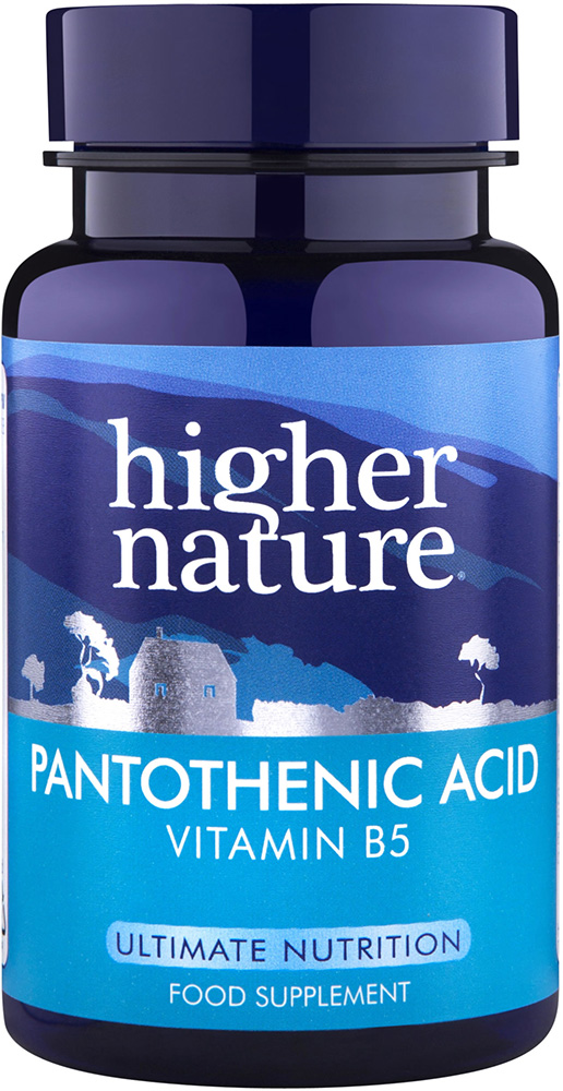 Higher Nature Pantothenic Acid 500mg - Size 60